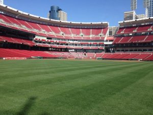 Athletic Field Sod & Turf Grass