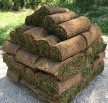 Moster Turf Pallet of Sod
