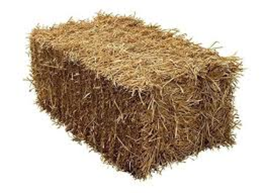moster turf straw